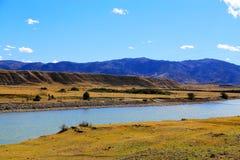 Η ομορφιά φθινοπώρου του οροπέδιου Qinghai Θιβέτ Στοκ εικόνες με δικαίωμα ελεύθερης χρήσης