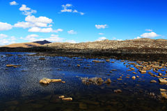 Η ομορφιά φθινοπώρου του οροπέδιου Qinghai Θιβέτ Στοκ Εικόνες