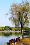 Η ομορφιά φθινοπώρου Xihu, δυτική λίμνη Στοκ Εικόνες