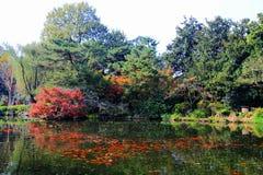 Η ομορφιά φθινοπώρου Xihu, δυτική λίμνη Στοκ φωτογραφίες με δικαίωμα ελεύθερης χρήσης