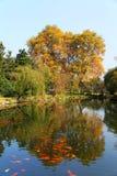 Η ομορφιά φθινοπώρου Xihu, δυτική λίμνη Στοκ Εικόνα