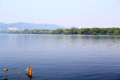 Η ομορφιά φθινοπώρου Xihu, δυτική λίμνη Στοκ Φωτογραφίες