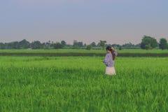 Η πίσω άποψη της νέας γυναίκας παίρνει μια φωτογραφία από το smartphone στο ρύζι στοκ φωτογραφία με δικαίωμα ελεύθερης χρήσης