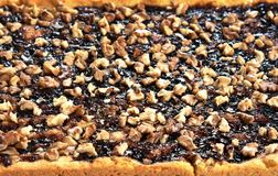 Η πίτα κουλουρακιών με τη μαρμελάδα και τα ξύλα καρυδιάς κλείνουν επάνω στοκ εικόνα με δικαίωμα ελεύθερης χρήσης