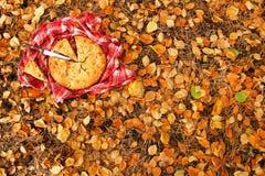 Η πίτα της Apple στην κόκκινη ελεγμένη πετσέτα με το μαχαίρι σε ένα υπόβαθρο του ξηρού κίτρινου φθινοπώρου φεύγει Στοκ φωτογραφίες με δικαίωμα ελεύθερης χρήσης