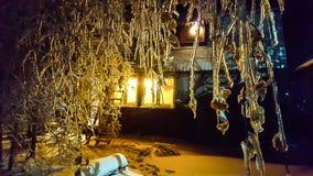 Η παγωμένη νύχτα Στοκ Φωτογραφία