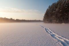 Η παγωμένη χειμερινή λίμνη στο δάσος κάτω από το χιόνι Στοκ εικόνα με δικαίωμα ελεύθερης χρήσης