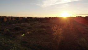 Η παλαιά καλύβα στο λιβάδι, η φύση, το θαυμάσιο ηλιοβασίλεμα και ο φακός καίγονται την επίδραση Εναέριες απόψεις με την ομαλή πτή απόθεμα βίντεο