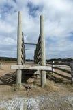 Η παλαιά φυλή για την αυλή βοοειδών Στοκ εικόνα με δικαίωμα ελεύθερης χρήσης