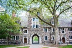 Η πανεπιστημιούπολη του Πανεπιστήμιο του Princeton Στοκ φωτογραφίες με δικαίωμα ελεύθερης χρήσης