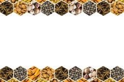 Η παράλληλη σειρά του συνόλου κυψελωτών καρυκευμάτων καρυκευμάτων και ραβδιών κανέλας καρυδιών, τα έναστρα αμύγδαλα γλυκάνισου κα Στοκ Εικόνες