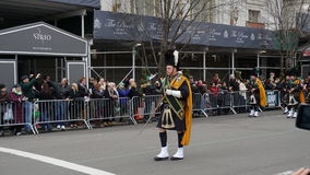 Η παρέλαση 141 ημέρας Αγίου Πάτρικ του 2015 Στοκ φωτογραφία με δικαίωμα ελεύθερης χρήσης