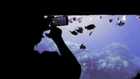 Η παραγνωρισμένη σκιαγραφία των χεριών, ένας τουρίστας σε μια βάρκα με ένα διαφανές κατώτατο σημείο, εξετάζει και φωτογραφίζει σε απόθεμα βίντεο
