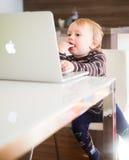 Η παραγωγή μήλων Στοκ Φωτογραφίες