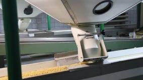 Η παραγωγή των ζυμαρικών απόθεμα βίντεο