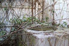Η παραμελημένη μονάδα HVAC εισβάλλεται από τη βλάστηση Στοκ Εικόνες