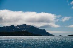 Η παραπαίουσα ομορφιά Prion του νησιού Στοκ Φωτογραφία