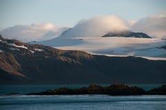 Η παραπαίουσα ομορφιά Prion του νησιού Στοκ φωτογραφίες με δικαίωμα ελεύθερης χρήσης