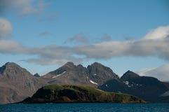 Η παραπαίουσα ομορφιά Prion του νησιού Στοκ εικόνες με δικαίωμα ελεύθερης χρήσης