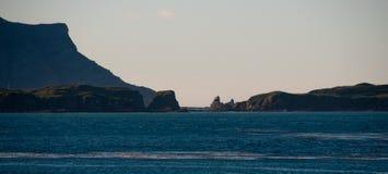 Η παραπαίουσα ομορφιά Prion του νησιού Στοκ Εικόνα