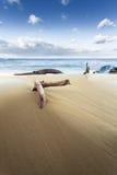 Η παραλία είναι μια άγρια παραλία Στοκ φωτογραφία με δικαίωμα ελεύθερης χρήσης