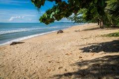 Η παραλία Bangsaphan σε Prachuabkirikhan Στοκ Εικόνες