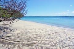 Η παραλία BLANCA Playa στη χερσόνησο Papagayo, Κόστα Ρίκα Στοκ φωτογραφίες με δικαίωμα ελεύθερης χρήσης