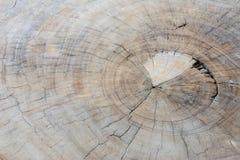 Η παλαιά ξύλινη σύσταση επιφάνειας Στοκ εικόνες με δικαίωμα ελεύθερης χρήσης
