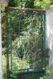 Η παλαιά πόρτα, οξύδωσε την πόρτα μετάλλων, πόρτα πλέγματος, πόρτα Στοκ φωτογραφία με δικαίωμα ελεύθερης χρήσης