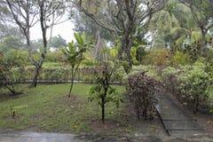 Η περίοδος βροχών στις Μαλδίβες Στοκ Εικόνες