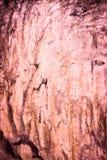 Η περίληψη έβλαψε το παλαιό υπόβαθρο τσιμέντου grunge, σύσταση  χρήση για το Χ Στοκ Εικόνα