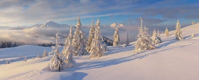 η περιοχή κοντά να κάνει σκι Ελβετία πανοράματος στο χειμώνα στοκ φωτογραφία με δικαίωμα ελεύθερης χρήσης