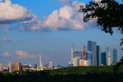 Η περιοχή των ουρανοξυστών της πόλης της Μόσχας, άποψη από μακρυά μέσω των φύλλων, ξύλο στοκ εικόνα με δικαίωμα ελεύθερης χρήσης