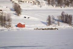Η περιοχή Troms, Νορβηγία στοκ φωτογραφίες με δικαίωμα ελεύθερης χρήσης