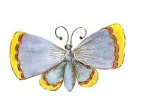 Η πεταλούδα είναι μπλε με τις κίτρινες άκρες των φτερών Σκίτσο με τα χρωματισμένα μολύβια από το χέρι Εικόνα ράστερ Στοκ Εικόνα