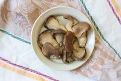 Η πετσέτα τσαγιού με τα μανιτάρια στρειδιών ostreatus Pleurotus, τρόφιμα Στοκ Εικόνα