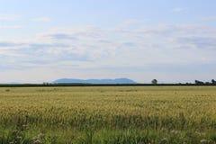 Η πεδιάδα και το βουνό Στοκ Εικόνες