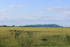 Η πεδιάδα και το βουνό Στοκ εικόνα με δικαίωμα ελεύθερης χρήσης