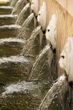 Η πηγή λιονταριών Στοκ εικόνα με δικαίωμα ελεύθερης χρήσης