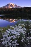 η πιό βροχερή αντανάκλαση Α& Στοκ εικόνες με δικαίωμα ελεύθερης χρήσης