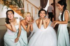 Η πιό happinest νύφη με τις παράνυμφους Στοκ Εικόνα