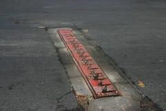 η πλάτη φορά το τ επάνω Στοκ εικόνα με δικαίωμα ελεύθερης χρήσης
