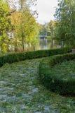 Η πορεία στο πάρκο καλύπτεται με τα πεσμένα φύλλα με σύνορα του τεμαχισμένου πυξαριού στοκ εικόνα με δικαίωμα ελεύθερης χρήσης