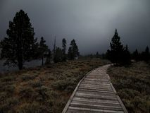 Η πορεία στο σκοτάδι στοκ εικόνες
