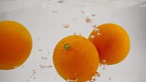 Η πορτοκαλιά πτώση στο νερό με τις φυσαλίδες Βίντεο σε σε αργή κίνηση Τα φρούτα απομόνωσαν ένα άσπρο υπόβαθρο απόθεμα βίντεο