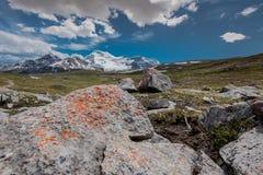 Η πορτοκαλιά λειχήνα αυξάνεται επάνω στους βράχους στο πέρασμα Wilcox Στοκ εικόνα με δικαίωμα ελεύθερης χρήσης