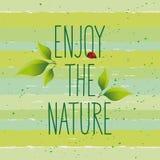 Η πράσινη έννοια, απολαμβάνει τη φύση Στοκ Φωτογραφία