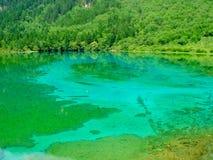 η πράσινη λίμνη και τα πράσινα δέντρα στην Κίνα στοκ εικόνες με δικαίωμα ελεύθερης χρήσης