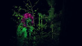 Η πράσινη μάγισσα κοιτάζει αδιάκριτα στην απόσταση, αφήνοντας τους θάμνους στα ξύλα τη νύχτα φιλμ μικρού μήκους