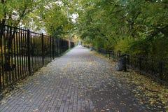 Η πράσινη στοά που φεύγει στην απόσταση Στοκ φωτογραφίες με δικαίωμα ελεύθερης χρήσης